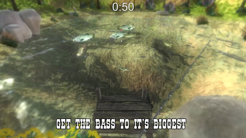Fishing Sim: Keep or Release